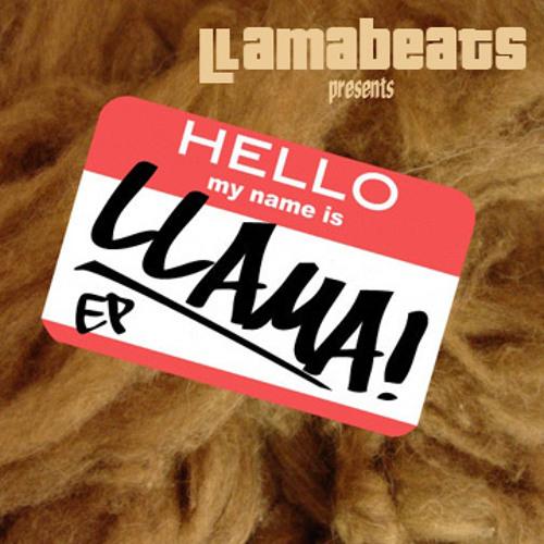 Hello My Name Is Llama