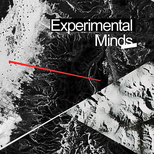 Experimental Minds