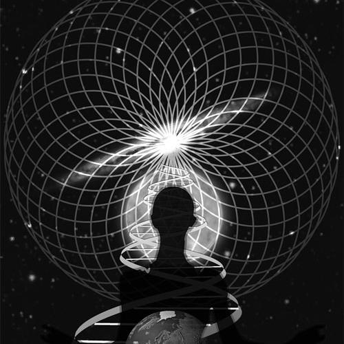 Self Reflecting Consciousness