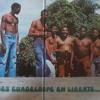 The Best Of Les Vikings De La Guadeloupe