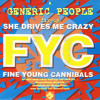 Fine Young Cannibals - She Drives me Crazy (GENERIC PEOPLE fix-up)