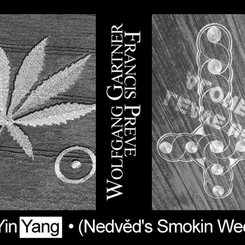 Wolfgang Gartner & Francis Preve - YinYang (David Nedved Rework)