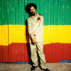 Le Sampleur Fou - More justice (Damian Marley rmx)