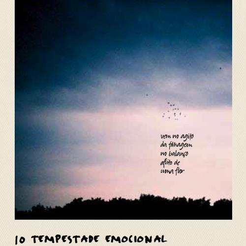 Tempestade Emocional