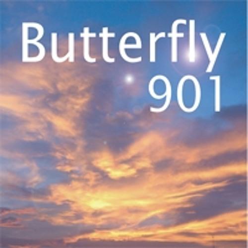 Butterfry_Edit