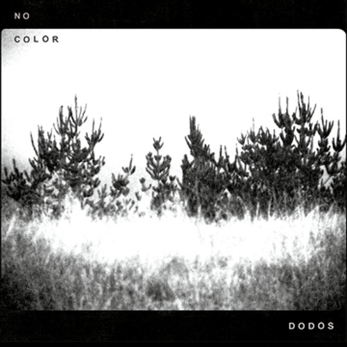 The Dodos - No Color