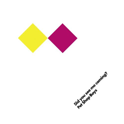 Pet Shop Boys - Did You See Me Coming? (Ralphi Rosario Radio Mix) [unreleased]