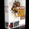 Loop Unit - String Loops - Sweeping Soul Strings (128kbs) Demo