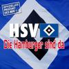HSV FANtastic - Die Hamburger sind da