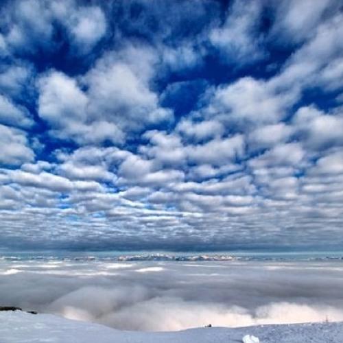 Seba Painted Sky (sonofthebass rmx)