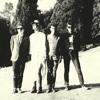 Crystal Zoom - 'Dunedin Sound on 45(Original Version)'