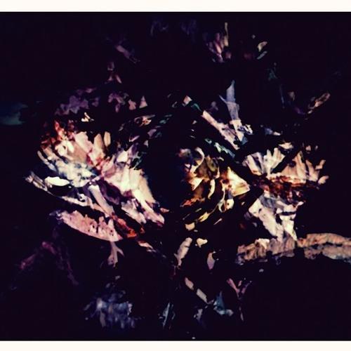 Fredrik - Rites of Spring
