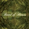Band Of Horses - The Funeral (Butch Clancy Remix) mp3