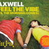 Feel the Vibe (Til the Morning Comes) Axwell featuring Tara McDonald