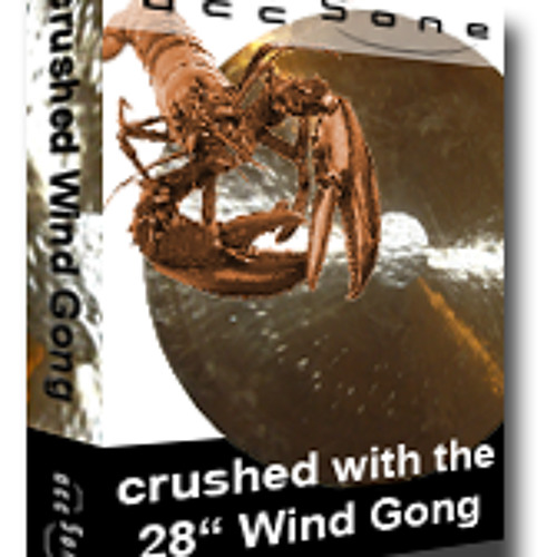 crushed with the Wind Gong 5
