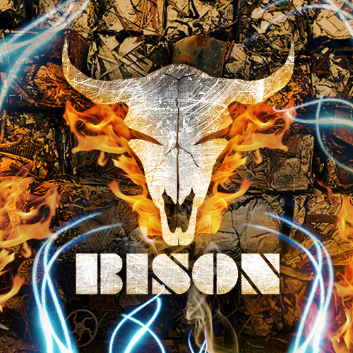 BISON - MONASTERY (SECTION8 RECORDINGS)**RELEASED**