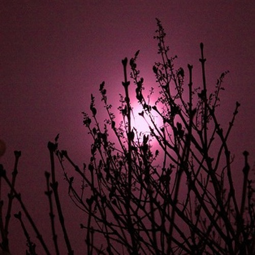 under the sorrowful moon ~ 12 pieces for solo piano