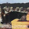 Socrates that practiçes music - Mrs Hammersmith