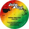 Capleton-Prophet rides again-JUNGLE RMX- Inkalink records
