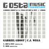 Gabriel Ghost & C.j. Wega - Girl Abduction In Bukovina