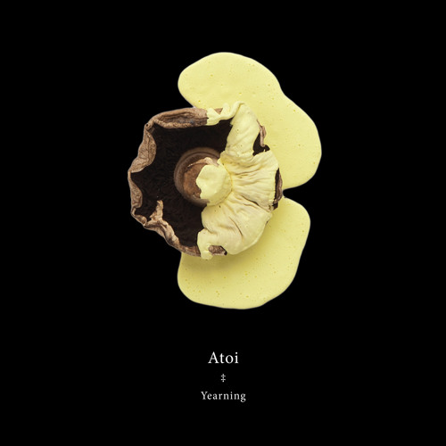 Atoi - Yearning (Taragana Pyjarama Remix)
