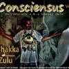 04-Le S.O.N Contre Le F-haiNe-24Karats a.k.a Shakka Zulu (Face B)