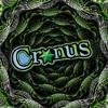 Cronus-Soulshaker