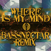 The Pixies - Where Is My Mind? (Bassnectar Remix)