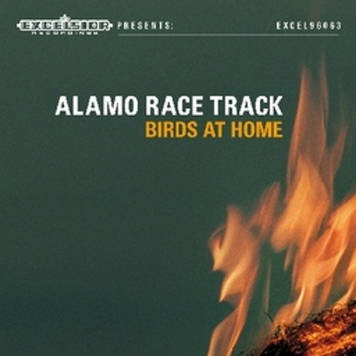 Alamo Race Track - Birds At Home