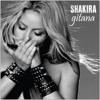 Gitana - Shakira - Dj Freemasons Ft Dvj aRiDeR