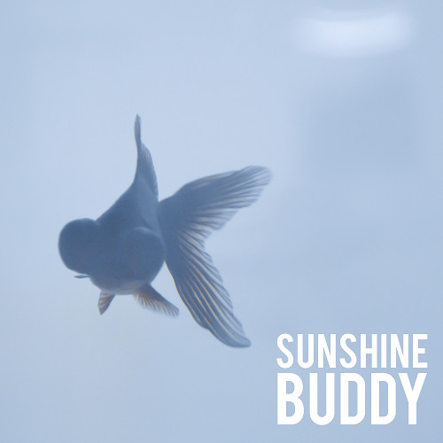 Laurel Collective - Sunshine Buddy