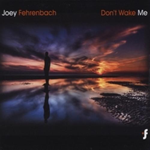 Joey Fehrenbach - Underwander