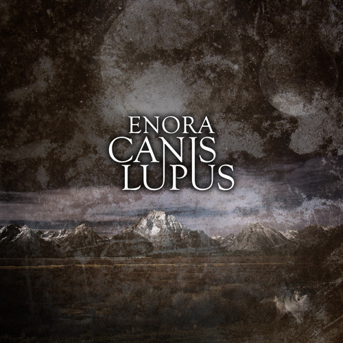 'Canis Lupus' by Enora
