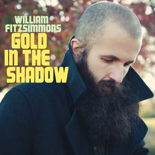 William Fitzsimmons - Filter Player