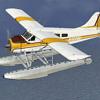 Flight Simulator X: Bush Flying