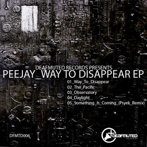 Peejay - Way To Disappear DFMTD006
