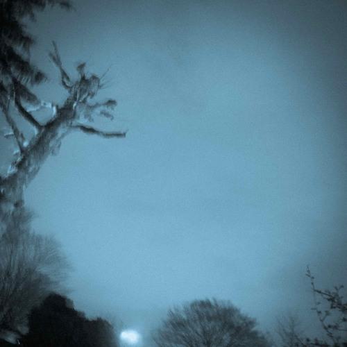 David Lynch - Ghost of Love