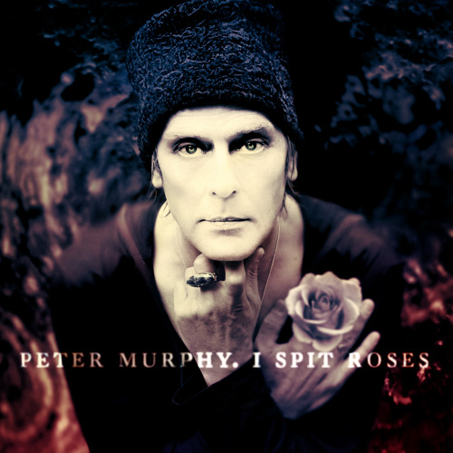 Peter Murphy - I Spit Roses