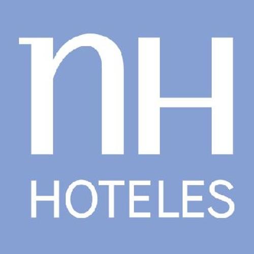 NH Hoteles y su estrategia para el año 2011