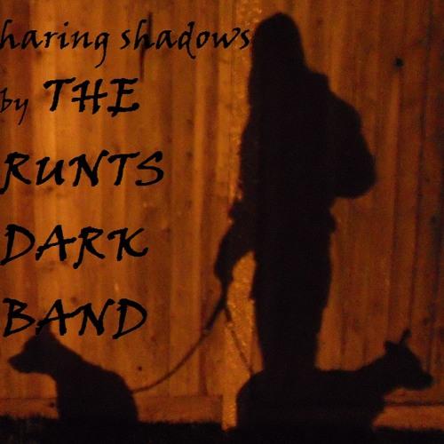 Sharing Shadows (demo)
