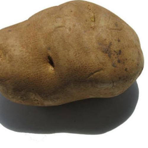 Break Bomb & Mikey Likes It - A Potato