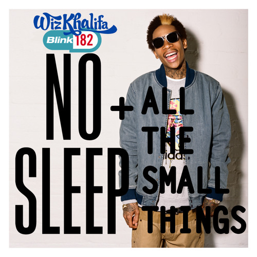 Wave Dive - No Sleep & All The Small Things (Wiz Khalifa with Blink 182) soft rock hiphop mash