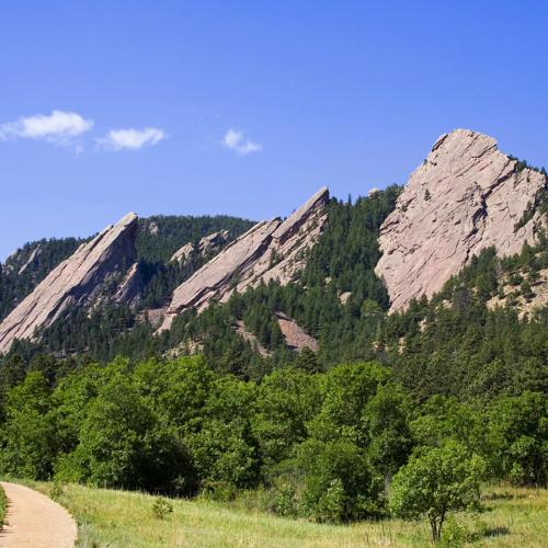 Boulder Artists