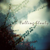 Falling Slowly (Glen Hansard)