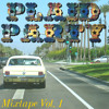 Plaid Party Mixtape Vol. 1