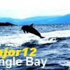 Dingle Bay - Major 12 mp3