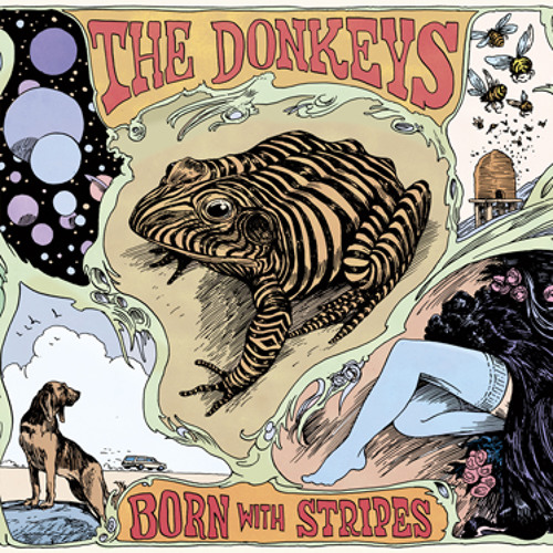 "The Donkeys - ""I Like The Way You Walk"""