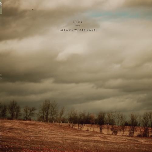 Lüüp - Spiraling (Aaron Martin Cover)