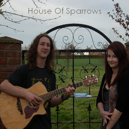 Make You Feel My Love - House Of Sparrows (Bob Dylan Cover)
