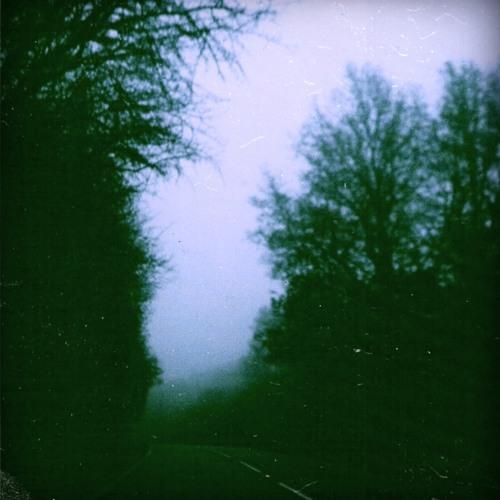 1991 (Lovely Rain) (WARMINAL001)